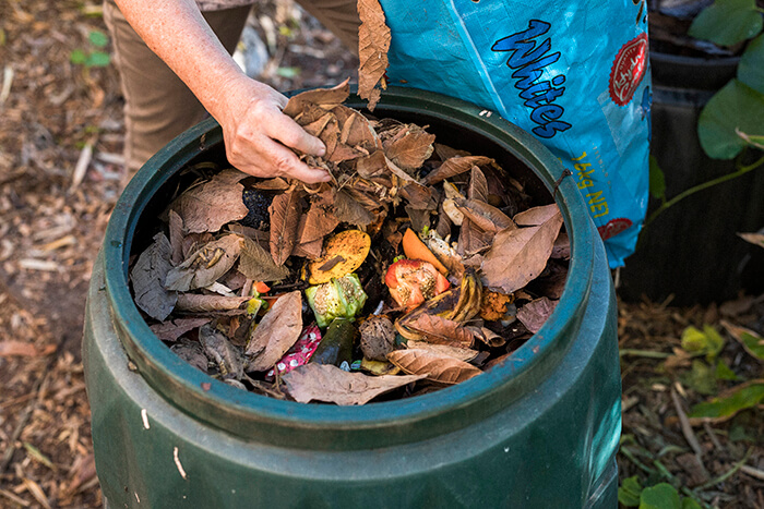 brown leaves in an open compost bin